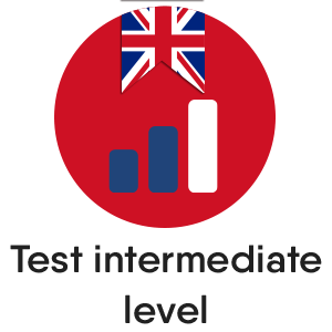 English test - Intermediate Level